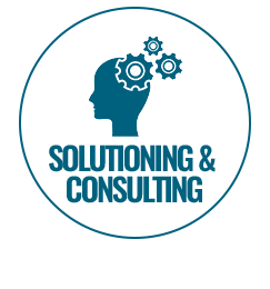 SA & Consulting